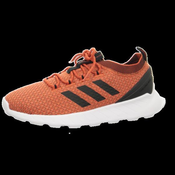 Adidas QUESTAR RISE